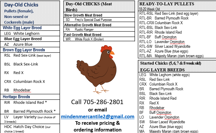 Minden Mercantile & Feed Co. Inc. > 2021 Chicken Orders